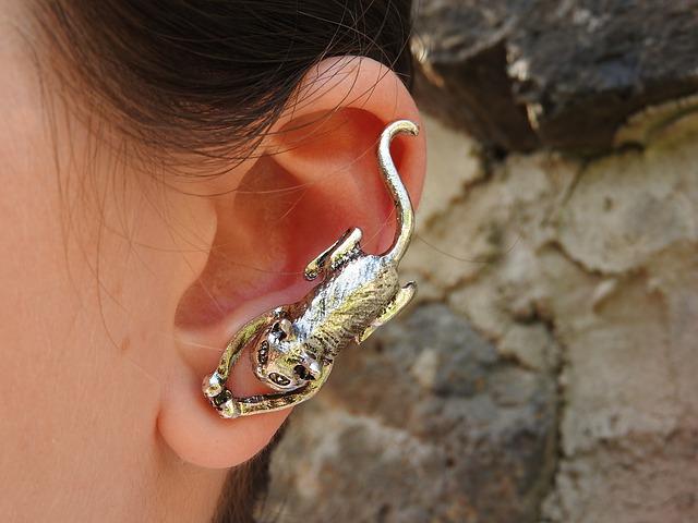 Stříbrná náušnice ve tvaru kočky na uchu